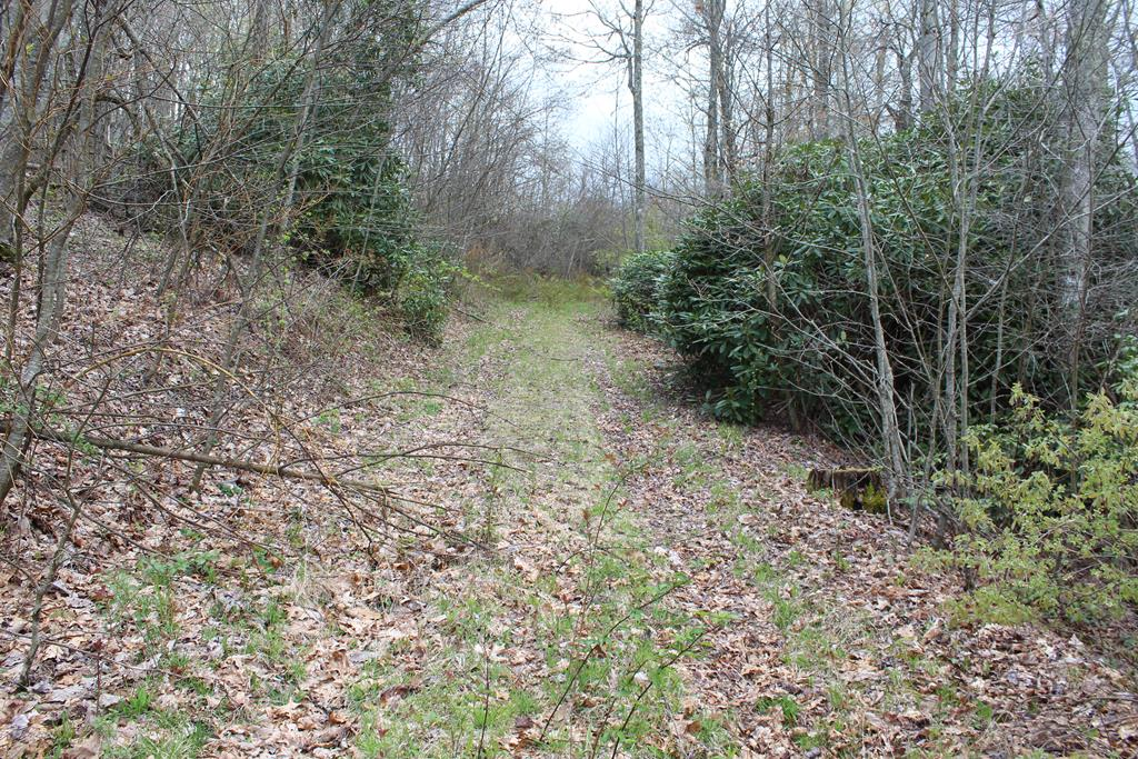 8.01 Acres located in Patrick County, VA.  (0 Jeb Stuart Highway, Meadows of Dan, VA 24120).  Approximately 1/2 ac open and 6.01 wooded.  Several Springs. Good building Sites. Abundant Wildlife-hunting.  No Restrictions.  No zoning. Electric and Telephone available.  Fronts on private graveled road (Old Quarry Road) has deeded access to Rt 58.