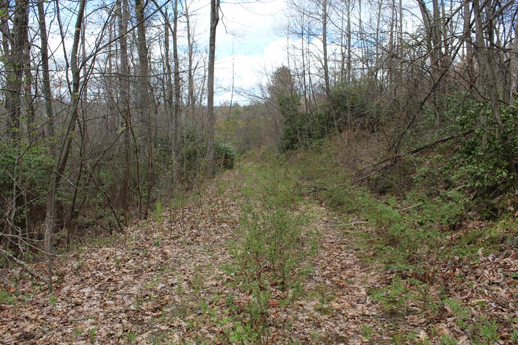 5.47 ac located in Patrick County Va.  (0 Jeb Stuart Highway, Meadows of Dan, VA 24120).  All Wooded. Young Timber. Access from Blue Ridge Passage and Old Quarry Road.  Land is rolling.  Good building site.
