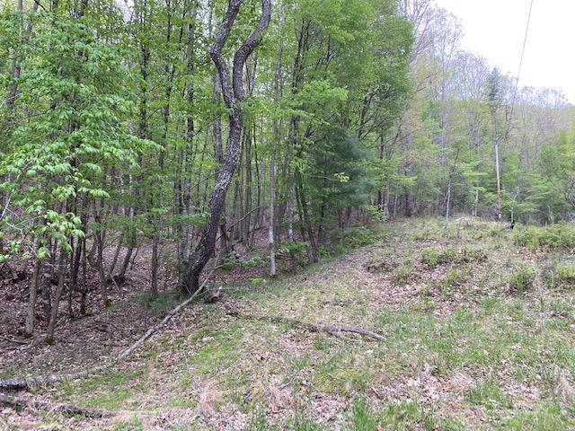 Great recreation property surrounded by National Forest. This property has ATV trails that go deep into the National Forest . 3 tracts make up the total acreage. Additional Deed Book is 377 page 425.