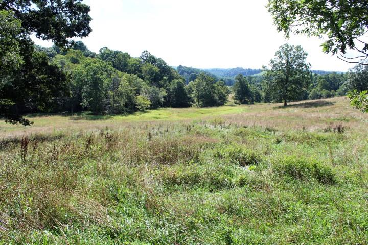 37.98 Acres of land for sell in Patrick County, VA (1684 Willis Road, VA 24120). Land is Rolling. All Open. Spring Branch on the Property. Views of Surrounding Area. Excellent building sites. Stream flowing thru property. Some fencing on the property. Abundant wildlife-hunting. Fronts on State Paved Road (Willis Road - Rt 758) for approximately 500feet. Thereis a home on this property which needs to be torn down. Selling as land only. There would be a well and septic system at the home site. Conveniently located. 5 minutes to Meadows of Dan, VA and the Blue Ridge Parkway. 10 minutes to Chateau Morrisette Winery. 20 minutes to Stuart, VA. 30 minutes to Hillsville, VA and Interstate I-77. 30 minutes to Mt. Airy, NC.
