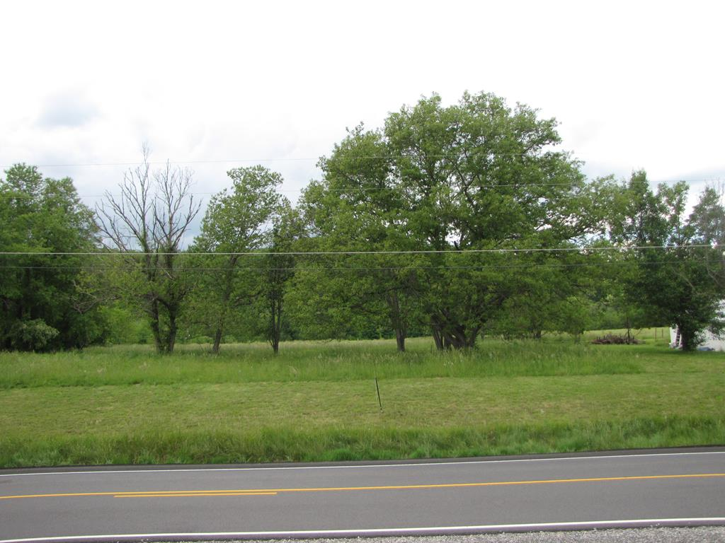 Nice flat building lot with some old apple trees on the property.  public water available (buyer to pay for hookup/tap fees).  This lot can be used for single-family, multi-family, and manufacture homes.