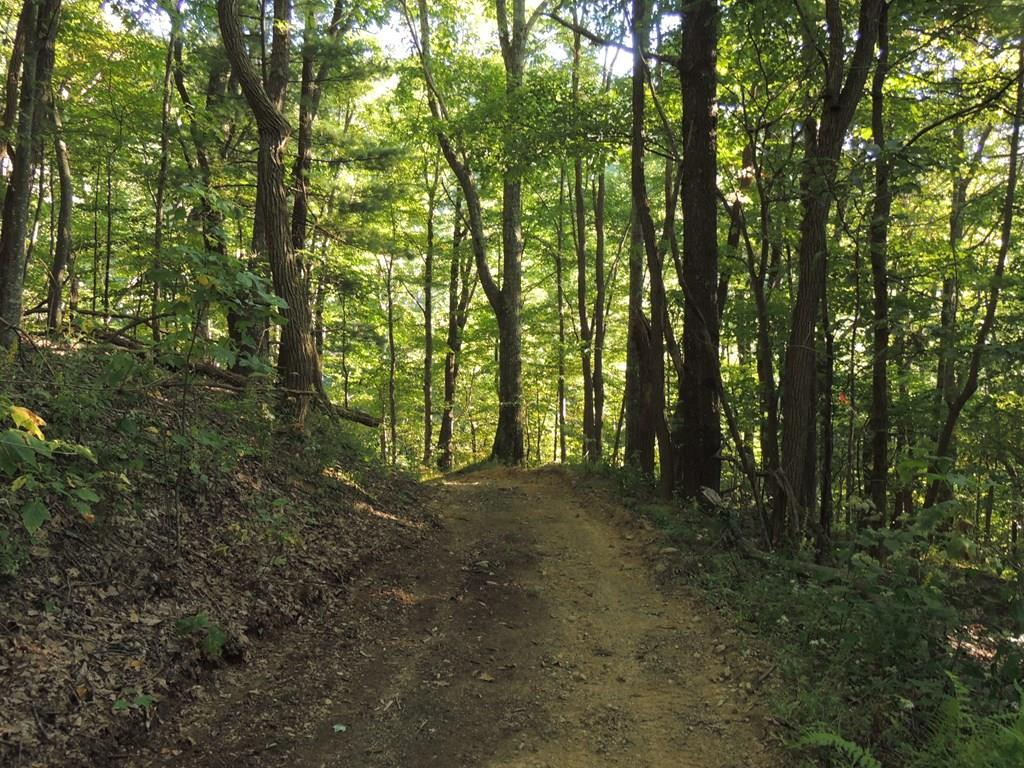147 ACRES OF ALL WOODED LAND LOCATED BETWEEN INDEPENDENCE AND ELK CREEK. ABUNDANT WILDLIFE!!! THIS IS A HUNTERS PARADISE. THE VIEWS ARE SPECTACULAR, OVER LOOKING THE ELK CREEK VALLEY.