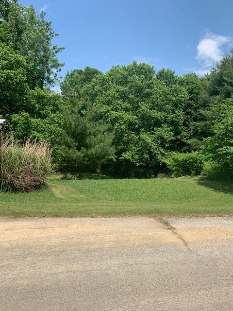 Looking for a great place to build your dream home on? This lot is perfect for seclusion with woods and close to everything! Call for your showing today!