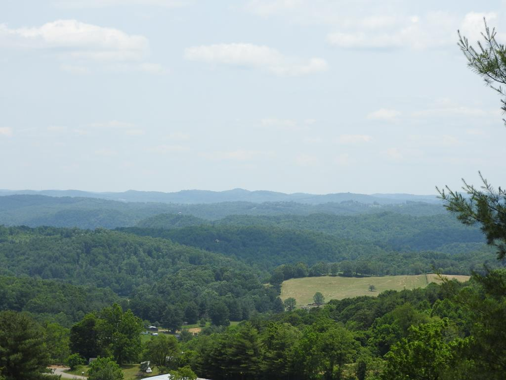 WOW WHAT A VIEW! 79+/- acres in Grayson County offering all the privacy you could ask for. High ridge top offering long distant views with great building sites for your new cabin in the Blue ridge Mountains.  Mostly wooded acreage with several Atv trails throughout. Perfect place to hunt and loaded with wildlife.