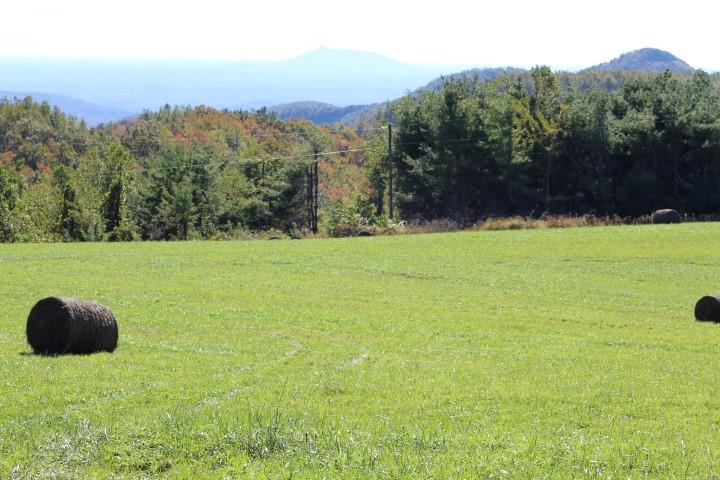 30.6 acres of land for sell in Patrick County, Virginia (0 Jeb Stuart Highway, Meadows of Dan, VA 24120). Tract 2.Land is rolling. 2 ponds. Several Spring Branches. Several good building sites. Abundant wildlife - hunting. Fantastic Long Range Views. Fronts on Paved Road - Highway 58. There is a homethat adjoins this property thatis for sell. Call listing agent for information about this home. (Country home has 5 bedrooms - 6 baths - 2 half baths).