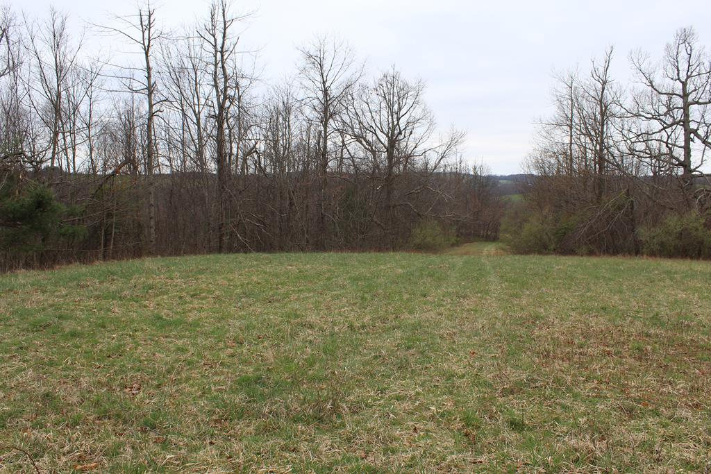 34.2 acres of land located in Patrick County, Va (0 Jeb Stuart Highway, Meadows of Dan, VA 24120) near Lovers Leap and North Entrance to Primland Resort. Fronts on Rt 58. Tract 1.  Land is rolling. Stream. Views. Good Building Sites. No Restrictions. Abundant wildlife hunting.Additional acreage available.