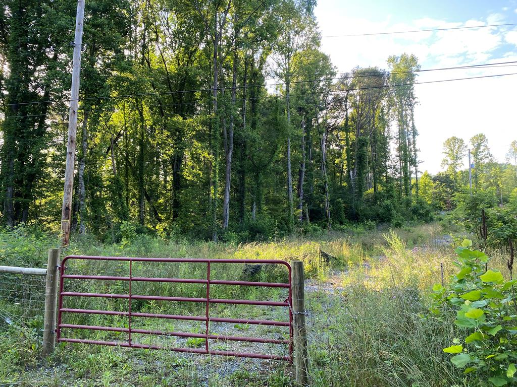 2.28 acre lot perfect for building your new home. This home site is situated on a corner lot and is conveniently located to downtown Damascus, the Virginia Creeper Trail, the Appalachian Trail, miles of stocked trout streams, South Holston lake and Abingdon Vineyards.