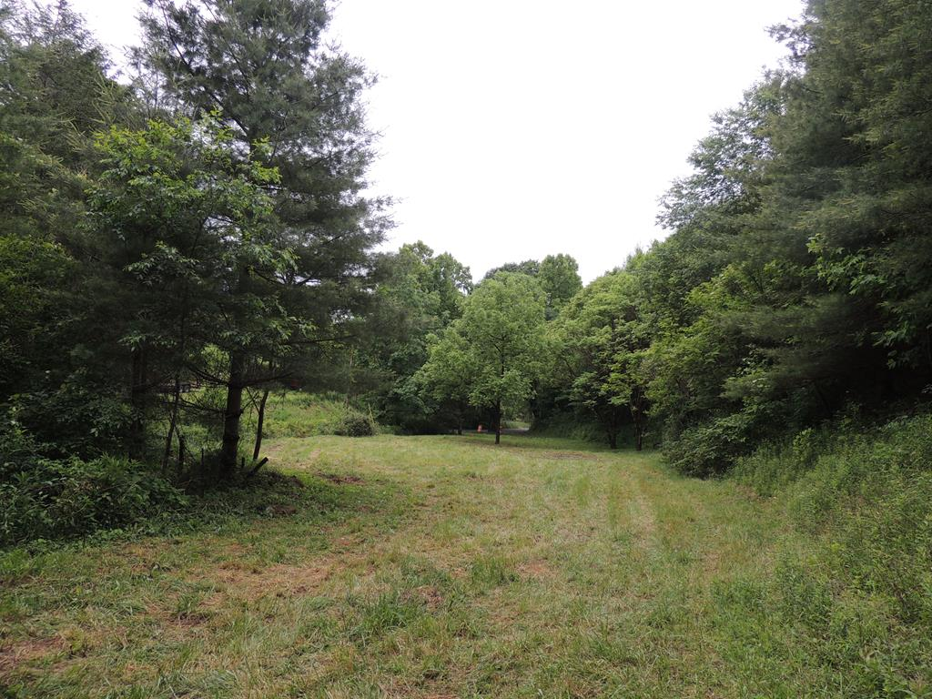 This property consists of 6.47 acres with a new survey. There is a beautiful bold creek that flows on the property, great access from a county road. Located near Grayson Highlands Park, Jefferson National Forrest and Whitetop. This tract is private and secluded and is the perfect place to build your second home, getaway or permanent home. Abundant wildlife, great for hunting. If you are looking for a small tract of land to build on that is within a short distance to so many of Grayson Counties attractions, this one is it!!!! There is a great quantity of white pine that is 21 years old which is one of the many reasons to make this fantastic investment in this particular property. Call today for more information!!!!