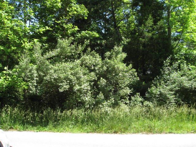 Prestigious Preston Place Community!  a beautiful Lot with its own character, currently wooded but would make a beautiful site with a nice view for your new home!