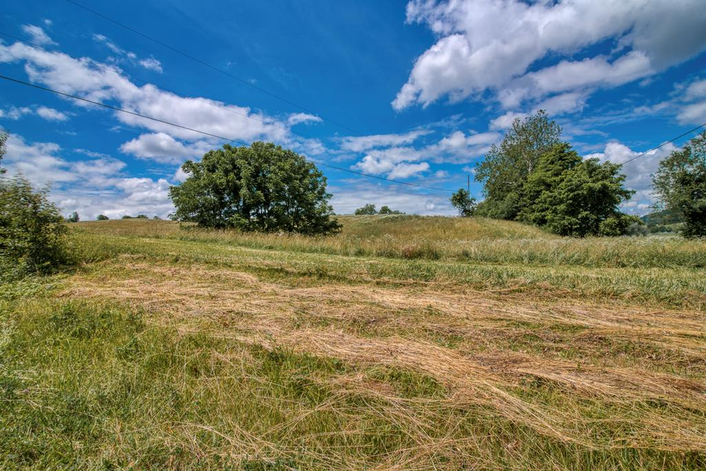 This gorgeous property has over 21 acres and is situated just a few minutes outside the town of Abingdon limits.  This incredible pasture land fronts Repass Road and is ready for it's new owner.  Zoned A-2.  Priced to sell!!