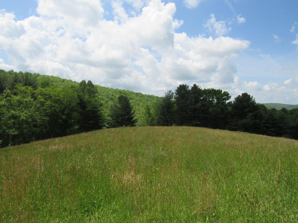 NO RESTRICTIONS on this 17.75 acres in the country! Views, creek, tranquil, private & secluded, only minutes away from Woodlawn, Galax, or Hillsville and I-77. No visible neighbors. Electric fencing for your horses or cows, several pasture meadows and open fields to rotate livestock or build your Blue Ridge Mountain Home on the upper knoll with spectacular views. A mix of wooded and open long-range view meadows, meandering creek at the back of property. With this gorgeous property you also get a 1995 Oakwood doublewide (livable), and two older homes that are in need of work and not livable. Numerous sheds/outbuildings to use as workshops or store feed, tools, equipment, etc. There are plenty of sites here to build a home, hunt, ride ATV's, or simply hike. Crooked Creek Wildlife Management area is just a short stroll down the road with a stocked trout stream for fishing. Bring your friends, family, or bring your horses, dogs, fur babies and enjoy the sweet fresh mountain air!