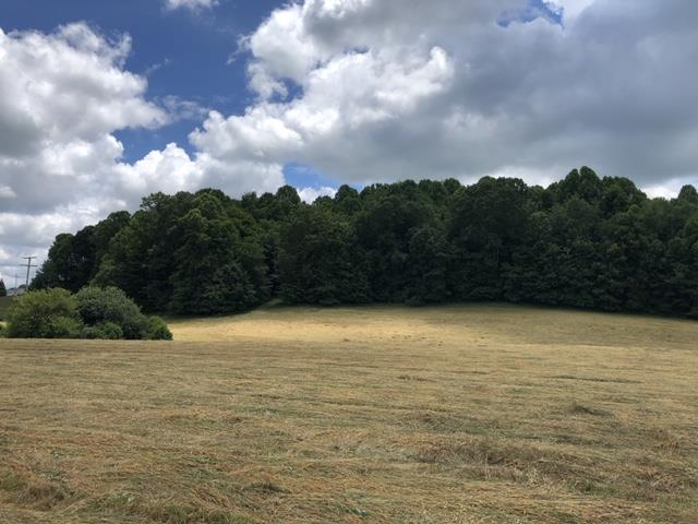 This beautiful 25 acre +/- property sits just outside the town limits of Abingdon Virginia!  This property is conveniently located to both Exits 19 and Exits 22 on I-81.  This property has great road frontage and is zoned A2 - the possibilities are endless!  Much of this land is rolling/sloping.  It is partially cleared land and partially wooded.  This land is priced to sell and won't last long!