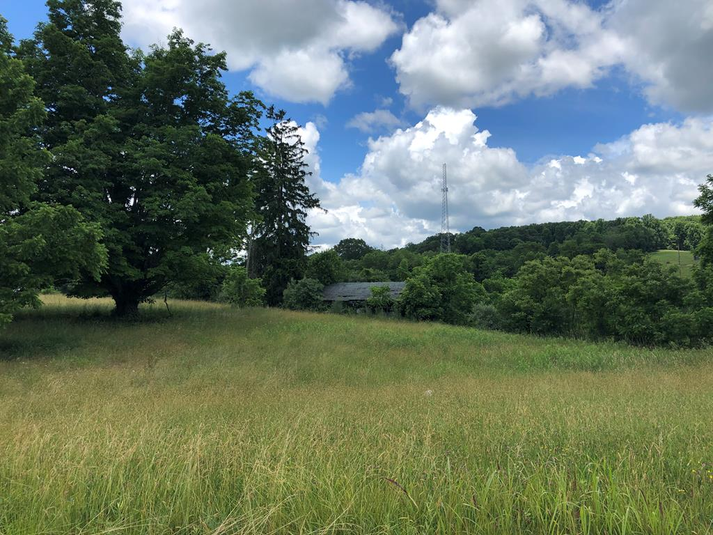 This 10 acre +/- tract is ripe for development!  Located just outside the town limits of Abingdon Virginia, this property sits conveniently located to Exit 22 of Interstate 81.  This property has great road frontage and won't last long!  This property is priced to sell!  Don't delay!