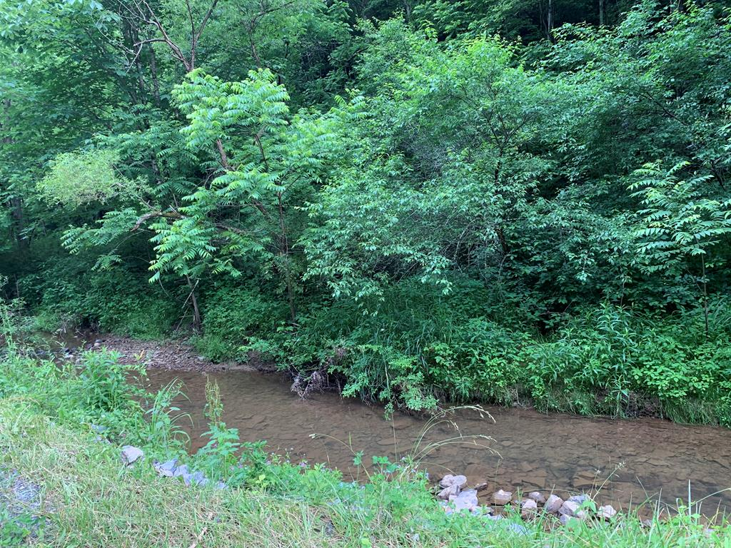 Nice secluded lot in the Chilhowie area! This property has 75' of road frontage and has a nice creek rolling through it. There is some timber value on the property. If cleared could be used as a homesite, or nice secluded place to put your RV! There used to be an old home on the property, but that has since been burned down. Take a look at this lot today and make it yours!