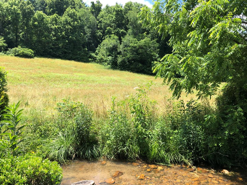 Beautiful 3.9 +/- acre lot that would be an ideal place for your home near the lake.  Only minutes to South Holston Lake and 15 minutes to the historic town of Abingdon, VA. This land is gently rolling and sloping and has a wonderful building site just behind the stream just waiting for you. Enjoy the wooded wonderland, complete with a stream running through the property. This property has public water and electric available and sits on a county road. Come and build your dream home and enjoy the nearby lake, mountains and culture.