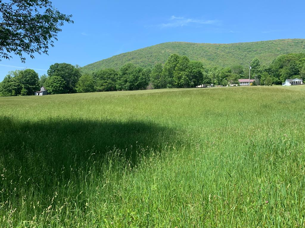 Nice 7.38 tract of farm land in the mountains! Features include a nice creek, barn, and fencing! Nice open land perfect for horses or cattle. This is a medicaid sale and must sale for tax assessed value, which is list price. There is an older home that connects to this land which is also for sale and can be bought separately, see MLS#74537