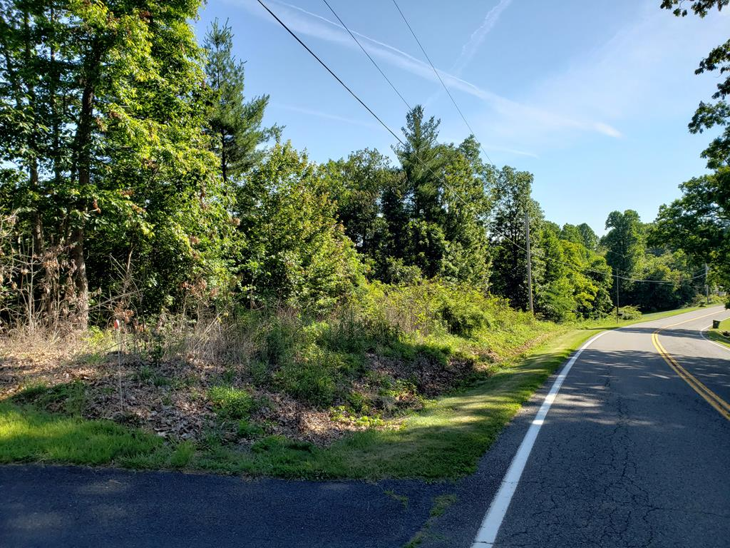 Wooded Lot just off Hwy 100. County water available. Easy access into Hillsville. Paved road.
