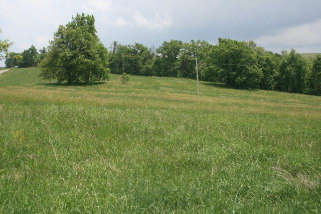 12.19 Ac located on Cloudbreak Road. Meadows of Dan, Vesta, Va Area. Rolling to Level. Approximately 2 Ac Wooded and 10.1 Ac of the tract is in fields. Some of the acreage was planted in corn. Approximately 500' of Road Frontage on Cloudbreak Road which is a state paved Road. Great Views of the Surrounding area. Several Great Building Sites. Abundant wildlife. Hunting. 4 Miles to Blue Ridge Parkway. 1 mile from Entrance to Primland Resort. 6 miles to Chateau Morrisette Winery and Mabry Mill. Close to Old Mill Golf Course. Easy Access to Stuart, Va, Floyd, Va, Hillsville, Va and Mt Airy, NC.