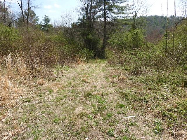 28 acres with views. Perfect land for hunting or to build a cozy cabin. Convenient to the New River and the New River Trail.