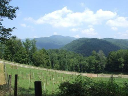 Escape from the city to Garrett Creek Farm: Just 10 min. west of Abingdon, with wooded ridges rising above both sides of the state road, following the farm's cold mountain stream up the valley. The gated entrance follows a deep cove back into the center of the land with wooded ridge on one side & open, mountainside pasture land on the other. If you dream of a place where you will not see any people, where you are free to hunt & fish, raise some livestock or horses & enjoy broad mountain views, then this farm could be your dream. As you drive up around the hillside, you may see some of the cattle grazing & a fenced orchard with a variety of fruit trees on the left. When you reach the ridge top , the property levels out & spreads across about 25 acres of open pasture surrounded by forest on one side & views of the mountains on the other 3 sides. Located on the highest spot, is a low maintenance, modern 2 BR cabin w/garage bays for 3 four wheelers. A deep well provides great, cool water.