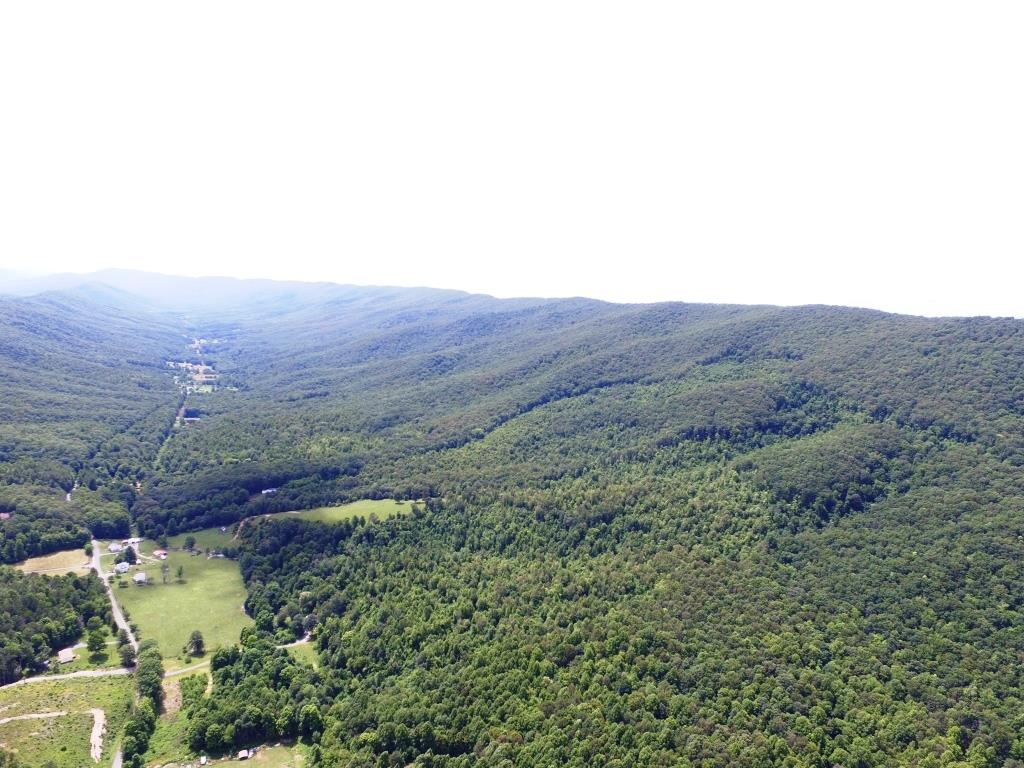 A very unique 1719 acre wooded tract on the East River Mountain.  Elevation tops out at 3600' allowing for amazing views of the valley and a peak into West Virginia.  This tract of land offers marketable timber, paved road frontage, and several springs/streams.  A hunter's paradise with plenty of wild game!  A blank canvas of opportunity for this remote and wild mountain escape.