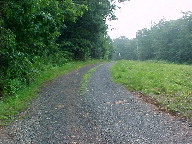 9.54 Acres of land for sell in Patrick County, Virginia (0 Rt 58, Meadows of Dan, VA 24120). All Wooded. Small Stream on West Side. Level to Gently Sloping. Abundant Wildlife-Hunting. Several GreatBuilding Sites. From Rt 58 to Property a Deeded 50 Ft right of way. 5 Minutes to North Entrance to Primland Resort. 10 minutes to Meadows of Dan, VA and Blue Ridge Parkway. 30 minutes to Hillsville, VA and Interstate I-77.30 minutes to Floyd, Va. 45 minutes to Mt. Airy, NC.  This is being sold as one parcel not as individual tracts.