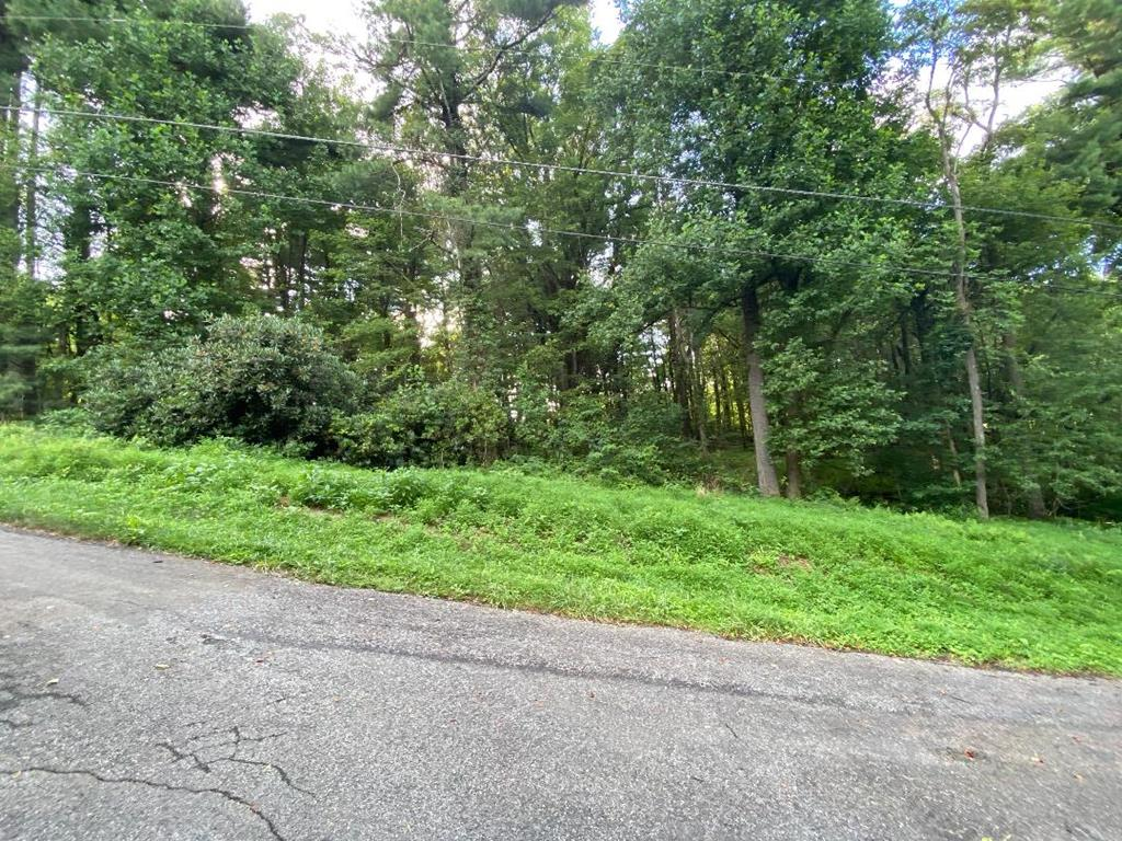 Have you ever wanted a beautiful buildable lot? Then look no further, located in Chalet High Subdivision many amenities including fishing ponds, tennis, clubhouse, community pool, ride your golf cart around the neighborhood and interact with the neighbors, family and friends. Slightly sloping wooded lot would be perfect for your next full time home or mountain get-a-way. R ight off the Blue Ridge Parkway, just minutes from restaurants, wineries, gas stations, Blue Ridge Music Center etc.