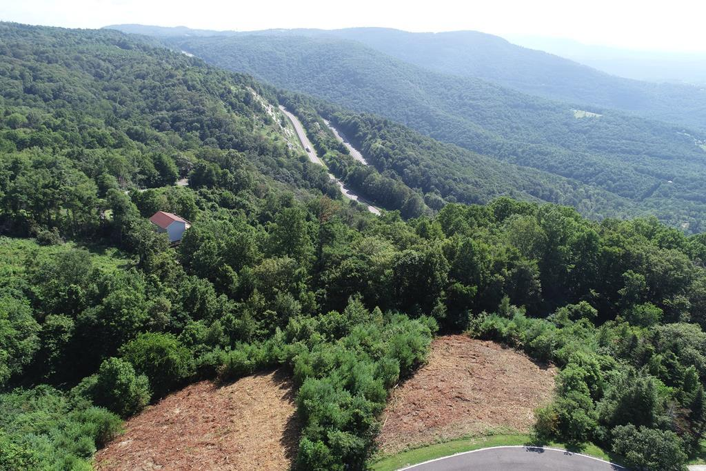 GREAT PIEDMONT & BLUE RIDGE VIEWS. THE LOT IS MOSTLY CLEARED AND READY FOR YOU TO BUILD YOUR MOUNTAIN HOME ON IT.  LOT HAS BEEN PERKED AND WILL SUPPORT A CLASS 2 SEPTIC SYSTEM.  EXCELLENT COMMUNITY FACILITIES TO ENJOY INCLUDE CLUBHOUSE, POOL, TENNIS OR PICKLEBALL,,SHUFFELBOARD, HORSE SHOES, HIKING OR ENJOY THE DUCKS WHILE FISHING IN THE NEARBY POND. NO EXPENSIVE WELL TO DRILL AS YOU CAN TAP ON THE COMMUNITY WATER SYSTEM. COME ENJOY THE COOL MOUNTAIN BREEZES. VERY FRIENDLY NEIGHBORHOOD WITH MILES OF PAVED ROADS TO RIDE YOUR GOLF CART. COME SEE WHY THERE ARE SEVERAL NEW HOMES BEING BUILT IN THIS HIDDEN GEM OF A COMMUNITY JUST OFF THE BLUE RIDGE PARKWAY.  WANT MORE? ADJACENT LOTS ARE ALSO AVAILABLE.