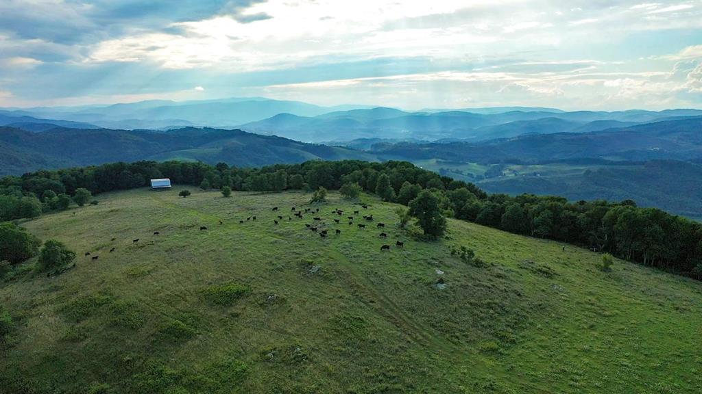 192+/- Acre retreat on Top of Buck Mountain in Grayson County, Boasting 4132' ft Elevations with 360 degree views overlooking the beautiful Elk Creek Valley. A one-of-a-kind, trophy property where the confluence of all that nature has to offer is located here, in the heart of the Blue Ridge Mountain of SW Virginia. This unique mountain top land offers a mixture of open and mature hardwoods with several springs and branches throughout and completely fenced. The owners have built a amphitheater just off the top of the ridge for family and friends to enjoy musical weekends. There is a Cabin partially complete and you can finish to your liking. This area of Grayson County some of the views sought after on the East Coast. This land harbors all manner of trophy sized wildlife with no restrictions. Located in close in proximity to the New River, Jefferson National Forest, and all the recreational opportunities the County has to offer. Developers take a look! Can be bought in smaller tracts.