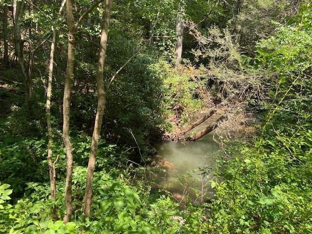 Wooded property and seclusion is what you will find on the 67.04 acres.  Property is divided into 4 tracts of land and has a creek flowing through at the bottom and also joins Jefferson National Forest on 2 sides.  This would make a fantastic recreational property and hunting.