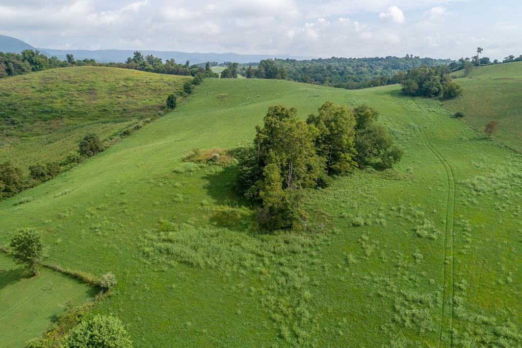 This farm is ready for you to bring your animals! The property already has fencing, two storage buildings and a barn! The land also has several potential building sites for your next home. Located in the country but also just minutes away from I-81.