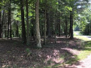 2 1/2 wooded acres in small private development with underground power/phone. Comes with a 2 acre common area including stocked fish pond for everyone's enjoyment. Property also joins Crooked Creek Wildlife Management Area and only minutes from the Blue Ridge Parkway.