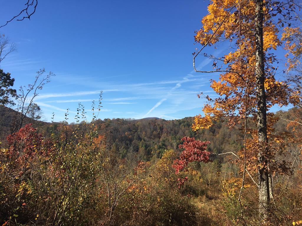 Very motivated seller!  Come take a look at 28.5 acres of extraordinary views, especially at this time of year. There is a level area to build your dream home, enjoy a wonderful garden and listen to the roar of Knob Fork Creek while gazing at the starry skies.  It would also be a wonderful property for any avid huntsman.  There is a spring on the property and electric is available.