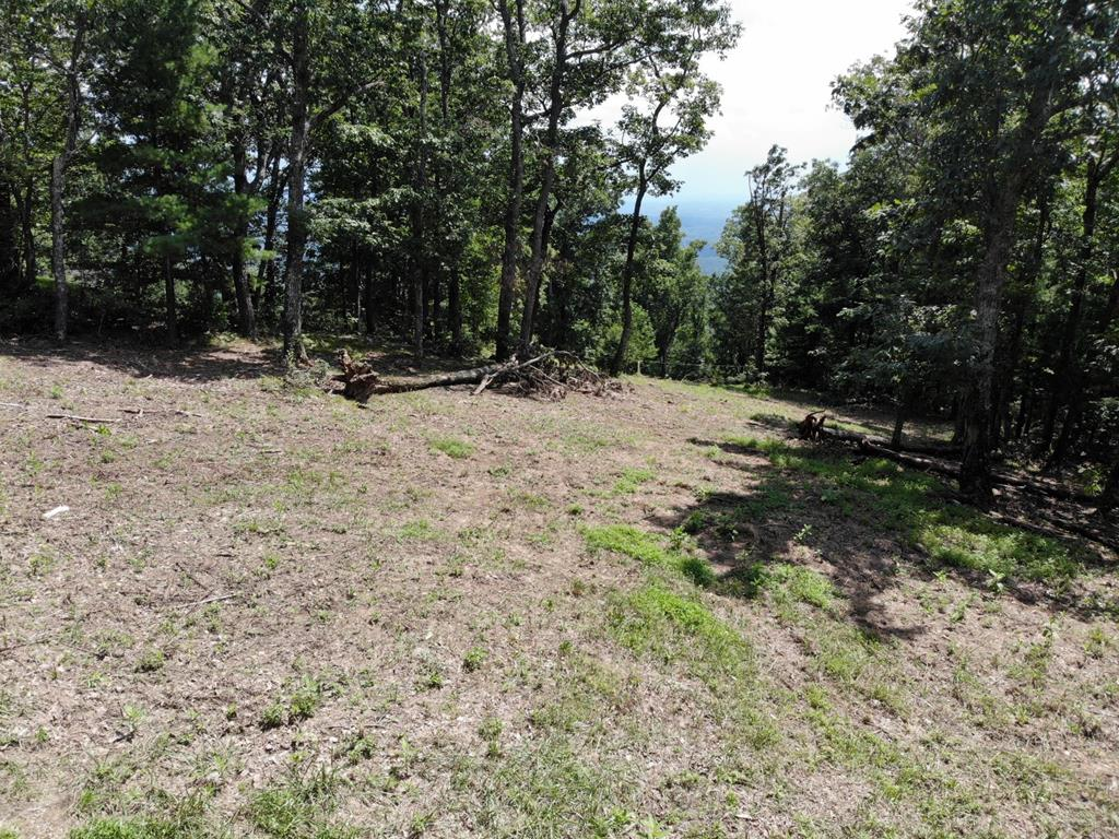 Two cleared lots with a Piedmont view and the septic system has been installed.  Electricity and community water are available.  Don't miss this opportunity to build your dream home in Cascade Mountain resort!  The lots are ready for you to start construction just as soon as you close.. Cascade Mountain is a gated community just off the Blue Ridge Parkway in Fancy Gap.  The resort amenities include an outdoor swimming pool, pool house, basketball court, volleyball court, play ground, tennis courts, fishing pond, community center, hiking paths, a place to take your garbage plus road maintenance.