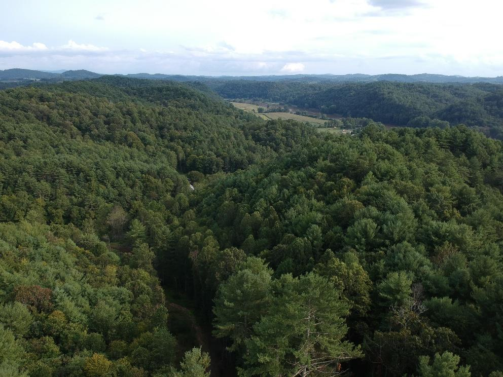 33+/- ACRES IN CLOSE PROXIMITY TO THE NEW RIVER! NICE WOODED TRACT WITH LONG ROAD FRONTAGE TO BUILD THAT NEW CABIN ON! THIS IS THE PERFECT RECREATIONAL TRACT FOR ALL YOUR OUTDOOR ACTIVITIES& LOADED WITH WILDLIFE!