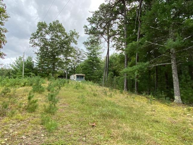Great seclusion for recreational or hunting property.  This 12.65 acres is located close to the National Forest and has an older mobile home for camping and hunting.  Great place for four wheelers and hikers.