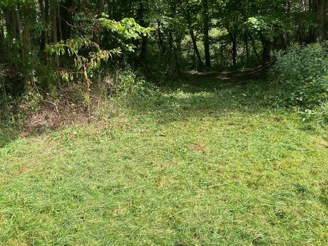 THIS 47 ACRES IS SITUATED IN THE ELK CREEK VALLEY WITH OVER 1100 FEET OF ROAD FRONTAGE ON HIGHWAY 21. ALL WOODED WITH MATURE TREES. GREAT VIEWS FROM THE TOP OF THE PROPERTY. SECLUDED AND PRIVATE. PERFECT FOR HUNTING OR CLEARING TO MAKE INTO PASTURE LAND IF YOU ARE INTERESTED IN HAVING A FARM IN THE FUTURE. THERE ARE A COUPLE OF NICE BUILDING SITES. GREAT LOCATION JUST NORTH OF INDEPENDENCE. LONG ROAD FRONTAGE WOULD ALLOW FOR SUBDIVIDING. THERE ARE MANY POSSIBILITIES FOR USES OF THIS PROPERTY. ABUNDANT WILDLIFE INCLUDING DEER, TURKEY AND BEAR. FANTASTIC SPOT TO BUILD A GETAWAY CABIN OR A SECOND HOME. PRICED TO SELL AT ONLY 199,900 CALL TODAY FOR MORE DETAILS.