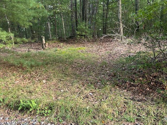 This 3.5 acres tract is all wooded and is unrestricted. Located just outside of Independence this property is a short drive to Independence or Galax. Within 10 to 15 minutes of New River and a public boat landing. Whether you choose to build a home, place a modular, mobile home or RV this property allows for any that you choose. With some clearing you would have a building site that could be private and secluded or just inside the woods. Call today for more details. Priced to sell at only 29,900