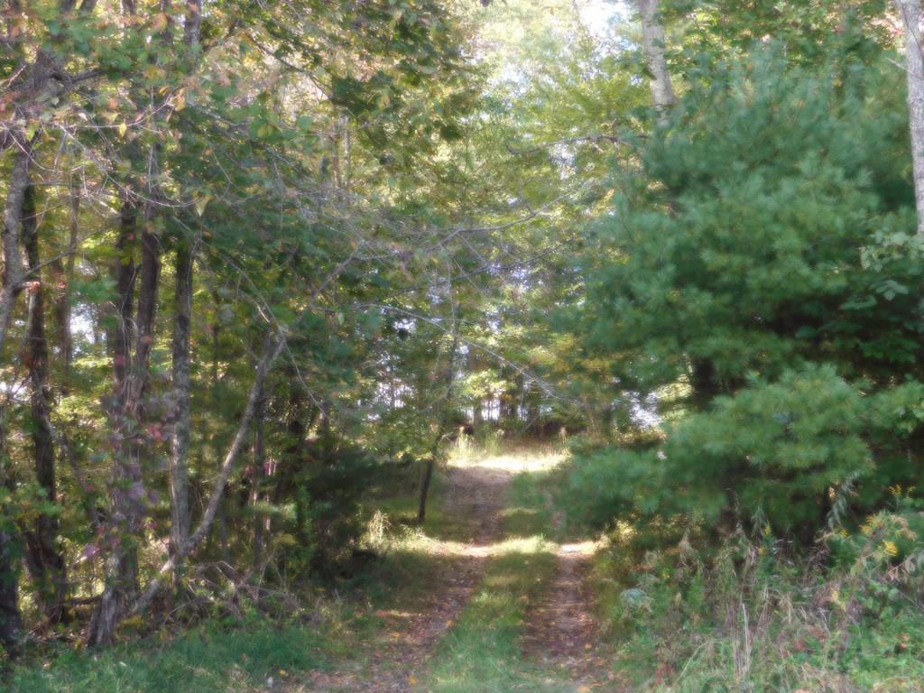 Great unrestricted 83 +/- acres with a beautiful views out in the country in a very peaceful setting. Just minutes away from the New River where you can enjoy family picnics, fishing, canoeing/kayaking, tubing, boating, and swimming. Land offers good use for hunting as well or bring you ATV and you could ride for hours. Perfect land for a permanent residence, a vacation home, or can be used as farm land. This land is a must see. Pictures do not do it justice. Beautiful, peaceful, and secluded. During fall and winter when leaves have fallen you will have a gorgeous view of the New River from up on the hilltop. Beautiful long range views. Land is partially cleared and partially wooded. This land is truly a must see.