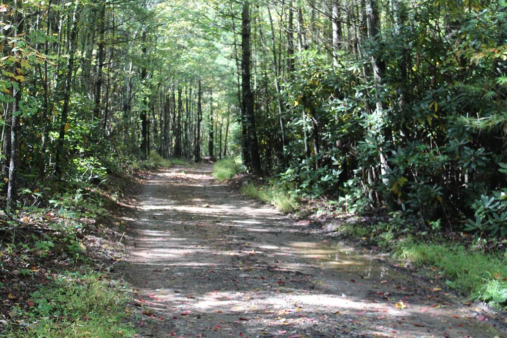 29.01 acres of land for sell in Carroll County, VA (0 Marion Road, Hillsville, VA 24343). Fronts on State graveled road on both sides (Marion Road). All wooded. Land is rolling. Land is divided into 3 parcels. 1 tract on North side of Marion Road. 2 tracts on South side of Marion Road. Tract on North side has stream on boundary. Abundant wildlife - hunting. Several good buildingsites. Telephone and electric is available. Owner is selling 29.01 acres as a whole not dividing into 3 tracts. Cemetery on SE side of the road. 15 minutes to Hillsville, VA. 30 minutes to Floyd, VA.