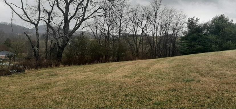 READY TO BUILD ---- Perked for 3 Bedrooms ---- Open and within a SHORT DISTANCE TO THE LAKE!  Build your DREAM HOME on this nearly 2 acres of property!  GREAT PRICE!