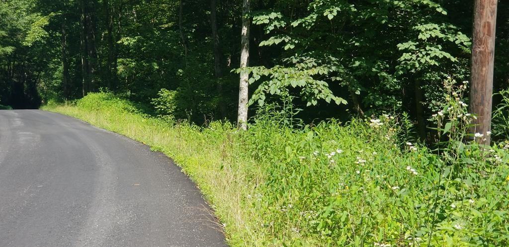 44.3 Acres. Great hunting and recreation property with creek. Convenient to Bristol and Abingdon.