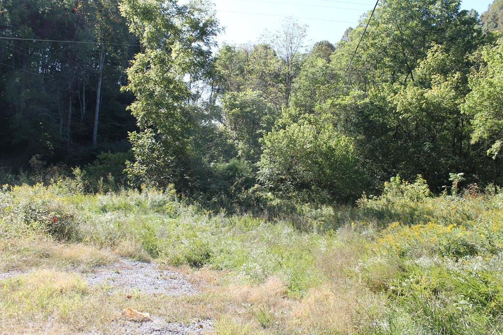 5.26 ACRES IN TWO TRACTS WITH FRONTAGE ON COX MILL ROAD, AND TWIN OAKS ROAD. PROPERTY IS ALL WOODS  AND HAS A SMALL STREAM. GOOD BUILDING SITE AND IS CONVENIENT TO SOUTH HOLSTON LAKE. WASHINGTON COUNTY TAX MAP #188-A-27 AND #188-A-27A. RECORDED IN INST # 090006293 PAGE 77 AND INST. # 090006294 PAGE 79.  PROPERTY IS IN THE NAME OF VIRGINIA C. ELDRETH,TRUSTEE OF THE ELDRETH REVOCABLE LIVING TRUST.