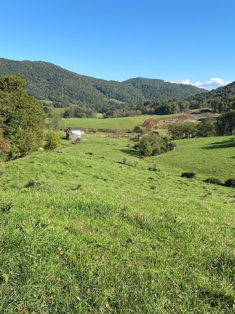 71 acres with a mixture of pasture land and mountain views. Two entrances on property with open road cut to the top to enjoy the views and open fields  Three springs on the property and many building sites to choose from or renovate the home site. This land is ready for your livestock with fencing and a barn already in place. This 71 acre tract really has it all, call for more information.