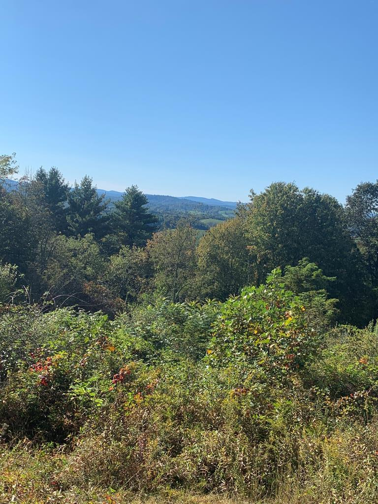 Lot #20 in Kindreck Mountain subdivision is rural and secluded with beautiful long-range southern views. There are mature hardwoods as well as mountain laurel on the property. This lot has frontage on Kindreck Rd. as well as Home Run Ln. There is a graded driveway and homesite on Kindreck Rd. Kindreck Mountain subdivision has very light restrictions. Make this your spot to build your dream home!!