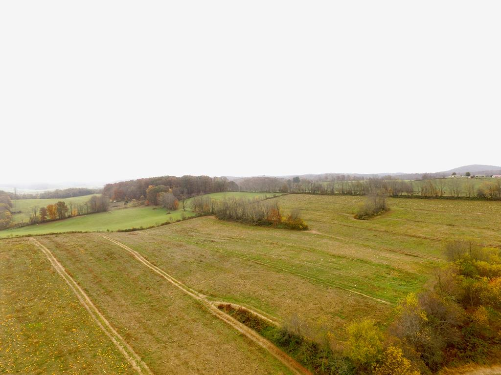 CHECK OUT THIS 25.98 +/= acre tract that is close to downtown Rural Retreat.   This would make a great mini-farm or home site.  The possibilities are endless.  Awesome views.  Give me a call today to see this one.
