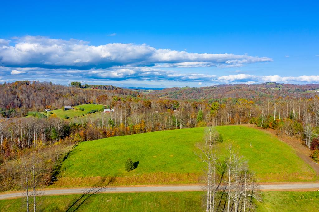 Come enjoy all of the beauty these 5 acres have to offer. The grassy knoll sits nearly 3000 ft above sea level providing a close to 360 view! You won't find a better place to build your dream home with a mountain view. The road to the property has been recently graded, making it easily accessible for all vehicles. The tract offers a mix of clear, level land and wooded areas ensuring just enough space for whatever recreation you'd like to pursue. Great location provides seclusion yet close enough to town to grab whatever you need. This view can't be matched, call to schedule a tour today!