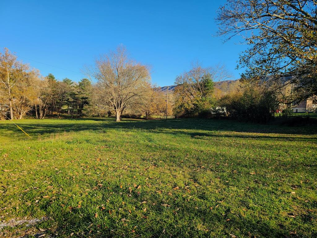 2.4 Acre undeveloped commercial lot in the town of Tazewell. This lot has many potential uses. Call today for your showing.