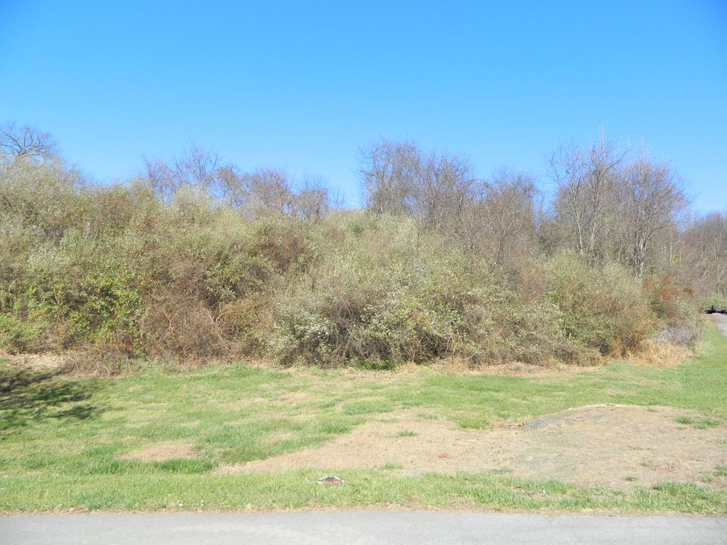 Ready, Set. Build on this .99 acre lot in Aspenvale Heights. In the Chilhowie school district. Corner lot. Public Water available, requires septic. Restrictive Covenants and survey in MLS docs. Close to I-81 and Lee Highway.