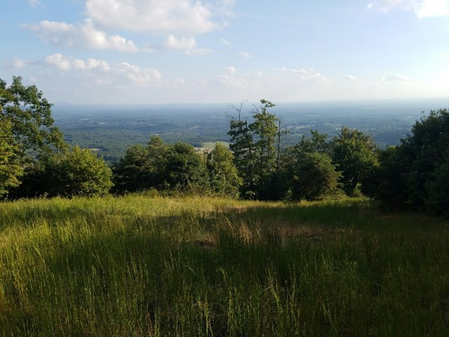 Nice Piedmont view lot in Reflection Farms. You will have a 180 degree view. Watch the sunrise and sunsets. See the skyscrapers 60 miles away in Winston Salem NC on a clear day.  Located less than 3 miles to the Blue Ridge Parkway.